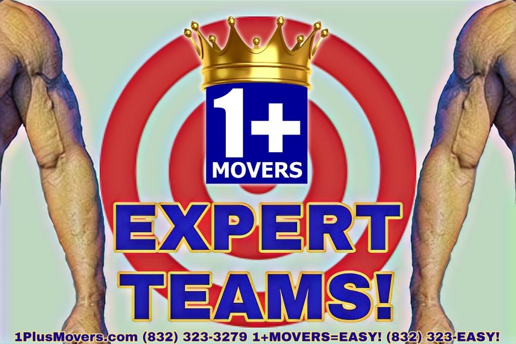 Expert Movers To The Rescue