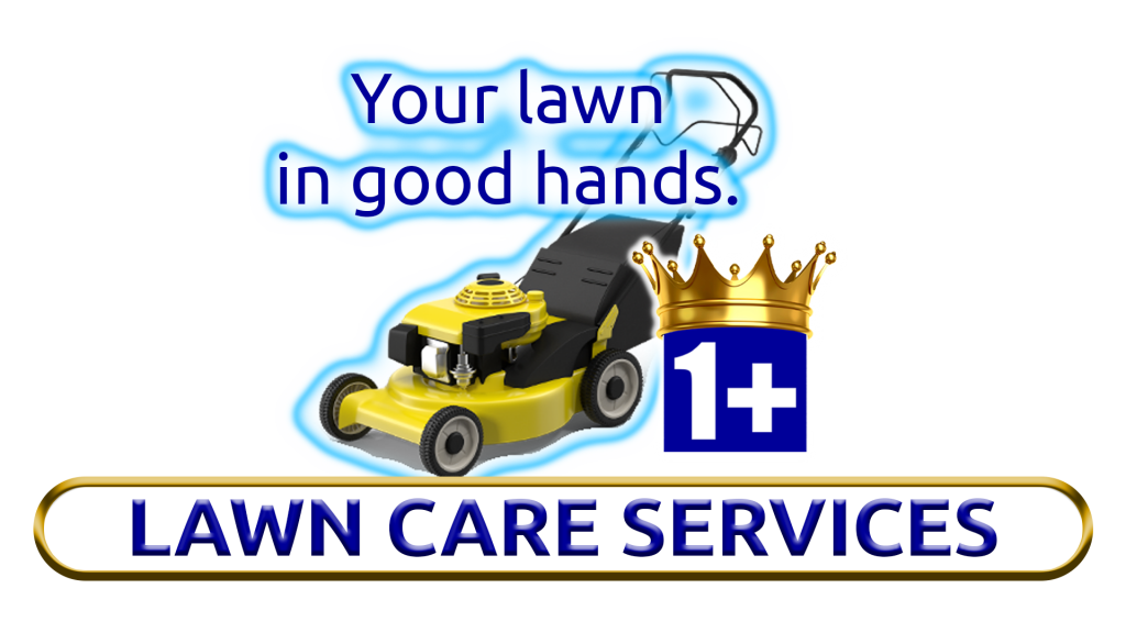 Image Of Lawn Care And Landscaping By 1+Movers