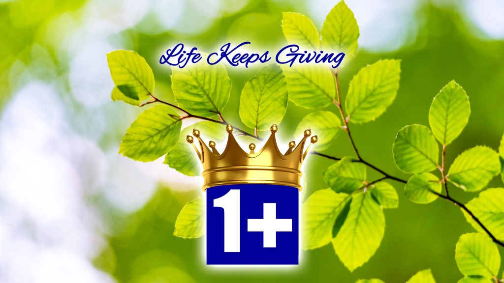Moving, Movers, Mover, Move, Moved - Houston, Texas - Nassau Bay, Texas - Galveston, Texas Life Keeps Giving 2